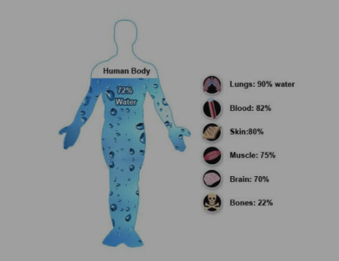 is there a relationship between body It has been appreciated for a very long time that there is a complex relationship between thyroid disease, body weight and metabolism thyroid hormone regulates.