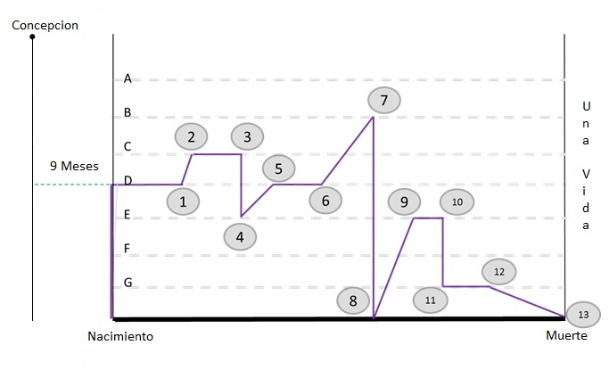 Graph in Spanish